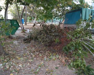 Гагаринский район Севастополя тонет в мусоре из-за отсутствия «лодок»?