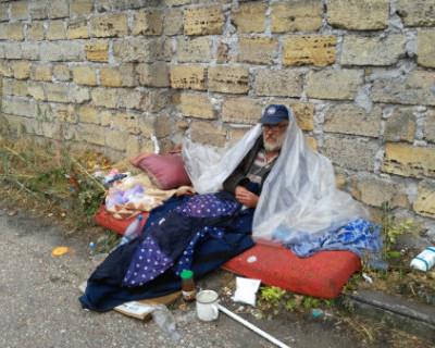 Опыт москвичей поможет в создании приюта в Севастополе