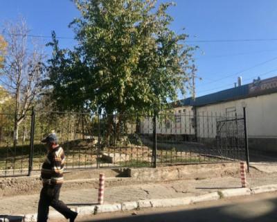 Самозахват Юмашевского рынка: в Севастополе незаконно огородили часть территории?