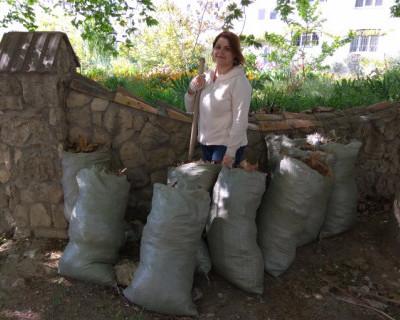В Гагаринском районе Севастополя «пылятся» бесхозные территории (ФОТО)
