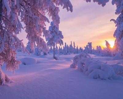 России пообещали розовую зиму