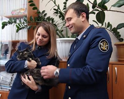 В Татарстане поймали пушистого наркокурьера