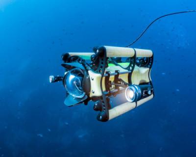 В СевГУ будут разрабатывать подводных роботов