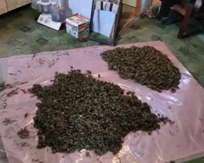 В Крыму мужчина выращивал в парниках злящее ФСБ растение (ФОТО)