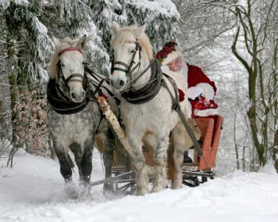 Самые популярные желания детей в письмах Деду Морозу