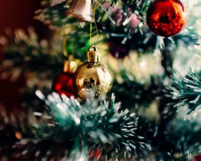 В Кемерово купили новогоднюю елку, которая стоит в три раза дороже кремлевской