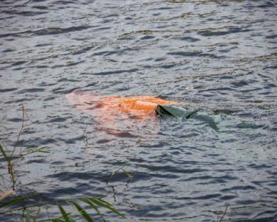 В Севастополе двое мужчин утонули в море