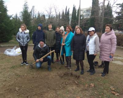В Севастополе высажен «дуб Гагарина» из кремлевского сада (ФОТО)