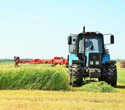 В Севастополе проходит оценка сельскохозяйственных земель