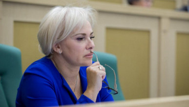 Сенатор Ольга Ковитиди обратила внимание своих колеег на спад в строительном бизнесе