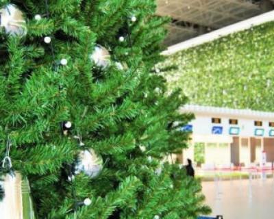 Аэропорт Симферополя украсила новогодняя елка