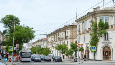 Команда Чалого требует избавить Севастополь от грецкого ореха как смертельно опасного дерева
