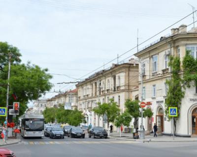 Команда Чалого требует избавить Севастополь от грецкого ореха, как смертельно опасного дерева