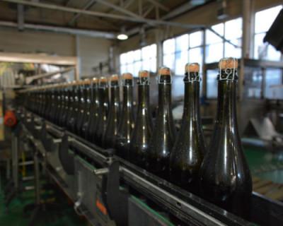 Севастопольские аграрии превысили показатели производства вина