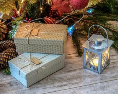 Депутат-единоросс подарил детям новогодние подарки со своей фотографией
