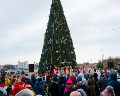 В ДКР Севастополя прошел праздник в честь новогодней красавицы