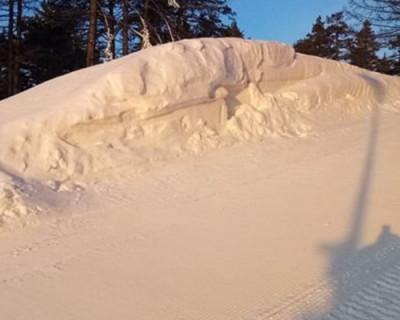 Сколько стоит снег в России на Новый год