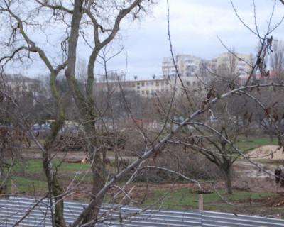 Парк в Севастополе строят – щепки летят
