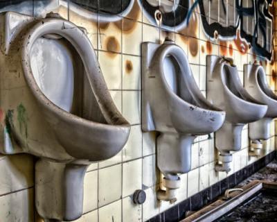 Депутат Госдумы Игорь Моляков попросил обеспечить трансляцию заседаний парламента в туалетах