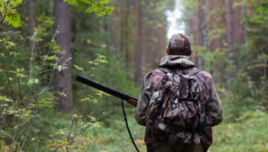 Орлиновское охотхозяйство вернёт Севастополю 4 000 га земли