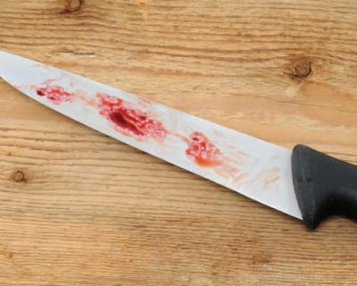 Школьник из Ульяновска обвиняется в попытке убийства учительницы