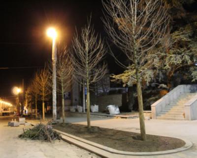 В Севастополе приступили к озеленению улицы Большая Морская