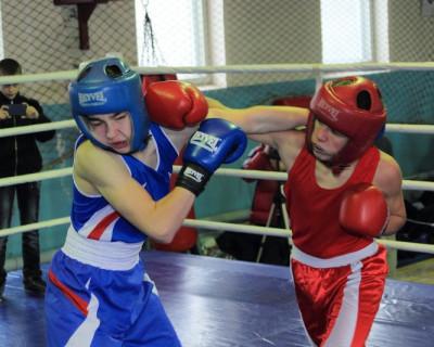 Приглашаем на севастопольский бокс!