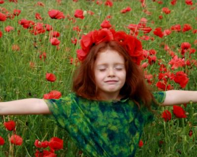 Как севастопольские чиновники и депутаты собираются обеспечить безопасный летний отдых нашим детям? Узнаем 24 марта