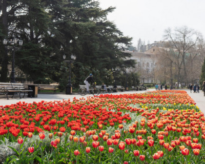 В Севастополе состоится рейтинговое онлайн-голосование по благоустройству общественных территорий в 2021 году