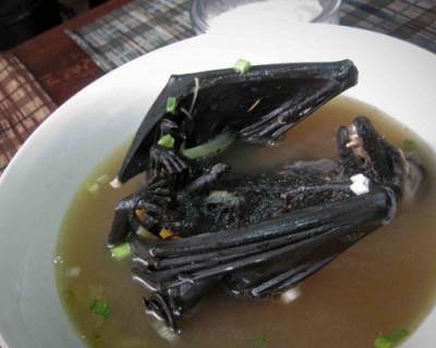 В России могут запретить блюда из летучих мышей, змей, обезьян и других экзотических животных