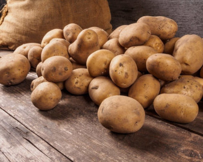 Картофель и гречка запрещены к вывозу с территории Белоруссии