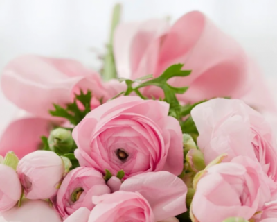 С днём рождения, весенние и прекрасные женщины Севастополя!