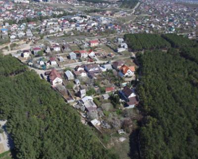 Севастопольцев просят не ходить в лес