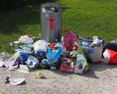 Жительница Севастополя украла мусорный контейнер