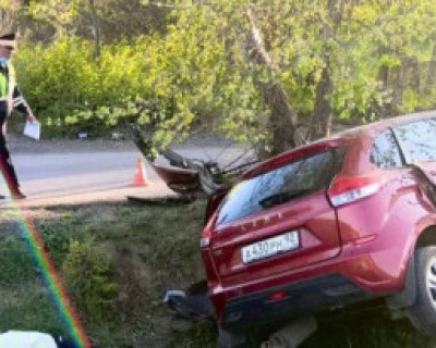 В Севастополе в ДТП погиб пассажир автомобиля
