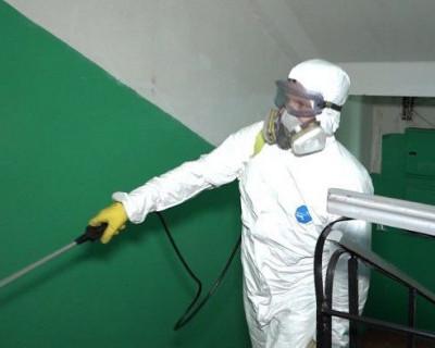 В Севастополе выделят почти 70 млн рублей на дезинфекцию