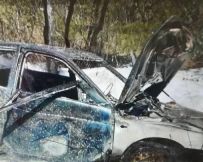 В Севастополе автомобиль влетел дерево и загорелся (ФОТО)