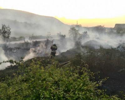 За сутки огнеборцы Севастополя ликвидировали несколько возгораний травы (ФОТО)
