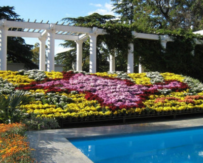 Никитский ботанический сад открывается 5 июня
