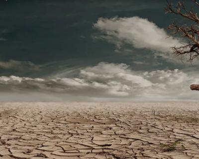 2020 год в Крыму самый засушливый за последние 150 лет