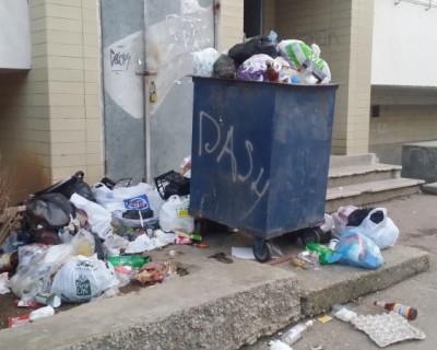 "Мусорная тема в Севастополе ""РУЛИТ""? (фото)"