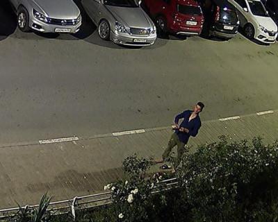 Ночные похитители роз в Севастополе (ВИДЕО)