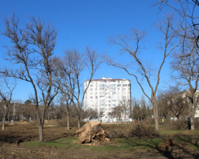 Жители проспекта Октябрьской Революции просят благоустроить парк