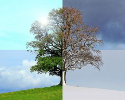 Депутаты Заксобрания Севастополя намерены откорректировать  времена года.  Зима начнется 1 января, лето – 1 мая, а осень – 15 октября. И только весна, как и положено,  - 1 марта