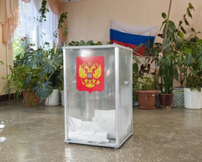 Глава ЦИК РФ назвала провокациями попытки дважды проголосовать за поправки в Конституцию