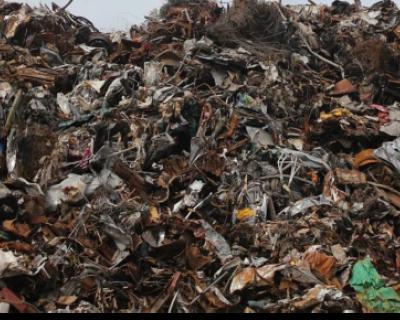 Депутаты Заксобрания Севастополя занялись мусором