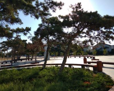 Что происходит в севастопольском парке «Учкуевка»? Или очередная недоработка Горлова
