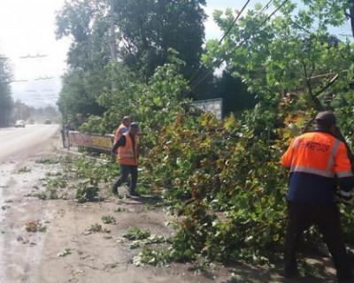 Штормовой ветер оставил без света 8 тысяч квартир и домов в Крыму