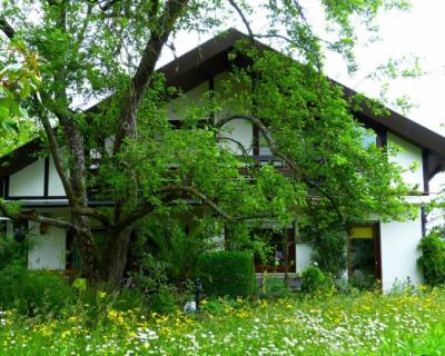 В Ялте из-за неуплаты налогов арестовали дом и земельный участок