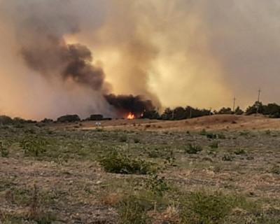 Масштабный пожар потушили огнеборцы Крыма под Бахчисараем